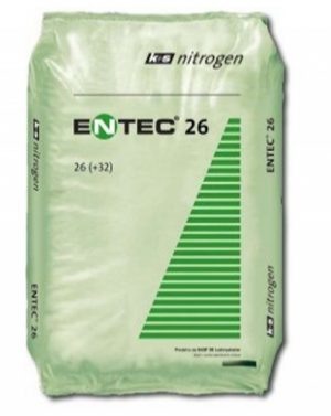 ENTEC 26 – sacconi