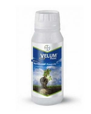 VELUM PRIME – 500 ml