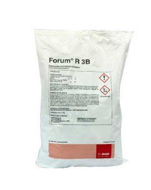 FORUM R 3B – 1 kg