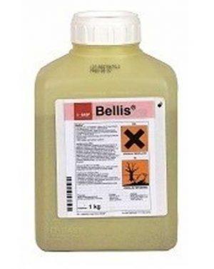 BELLIS – 1 kg