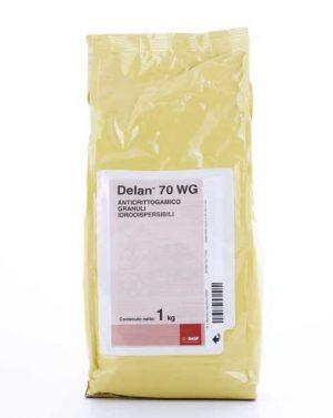 DELAN 70 WG – 1 kg