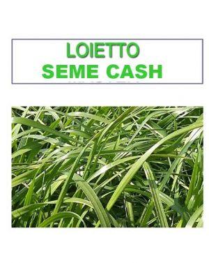 LOIETTO SEME CASH – 25 kg