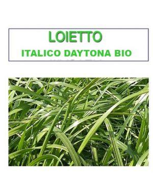 LOIETTO ITALICO DAYTONA BIO  – 25 kg