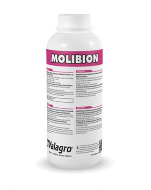 MOLIBION – 1 lt