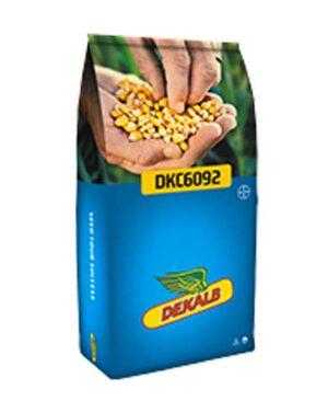 MAIS DKC 6092 KORIT 420 FS – 50m semi